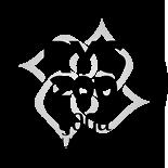 RYS200 Logo